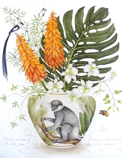 Monkey with Aloe Flowers 2013 - SOLD