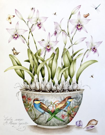 Bee-Eaters with Laelia Orchid - SOLD