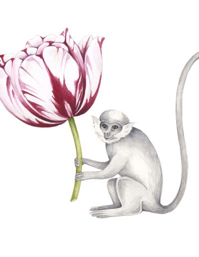 Monkey and Tulip – design for silk handbag lining